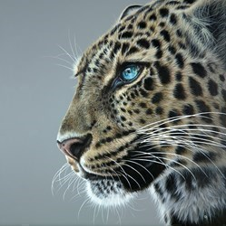 Blue by Gina Hawkshaw -  sized 30x30 inches. Available from Whitewall Galleries